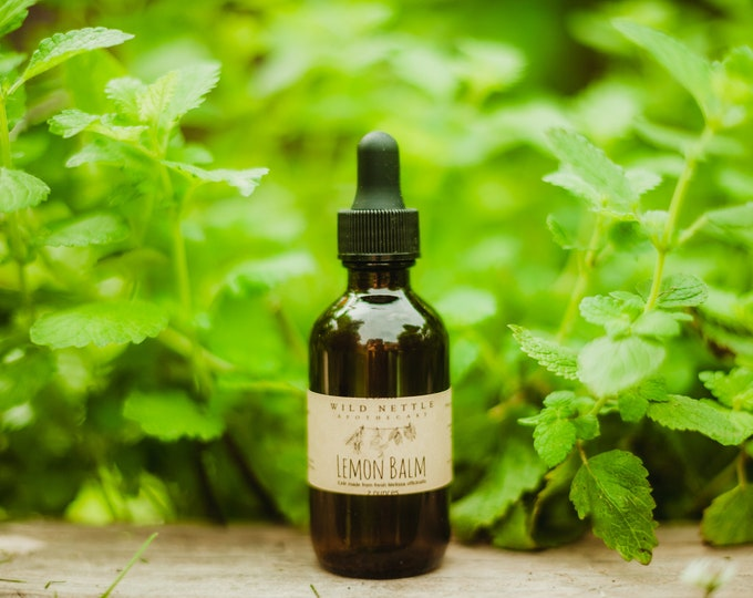 LEMON BALM ELIXIR - herbal supplement - nervous system support - organic - fresh herbs - raw honey
