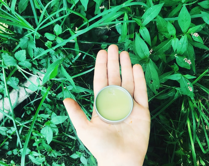 ALL PURPOSE SALVE - Back to Our Roots - traditional - all natural - from my hands to yours