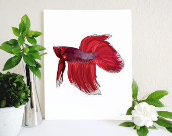 Betta Fish Art, Betta Fish Art Print, Red Betta Fish, Half Moon Betta, Fish Lover Gift, Siamese Fighting Fish, Aquarium Art, Pet Fish Art