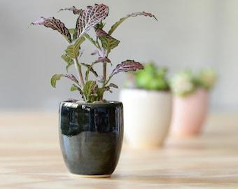 MINI SUCCULENT PLANTER // air planter - succulent gift - bridesmaid gift - wedding gift - air plant holder - pottery - mini planter- emerald