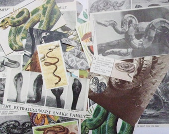 Vintage snake paper craft pack: 28 pieces including book clippings, pictures, cards. Craft kit for scrapbook, journaling, collage EP127B