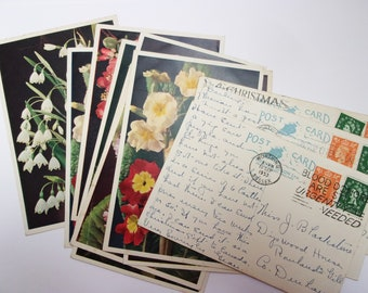 Vintage flower postcards: pack of 12 J Arthur Dixon used cards with 1950s stamps and postmarks. Collectable set or for use in craft PC231