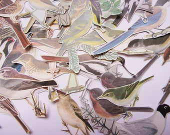 Vintage bird die cut style pieces: pack of 35 hand cut birds. Colourful paper embellishments for art journals, scrapbooks, collage PE750