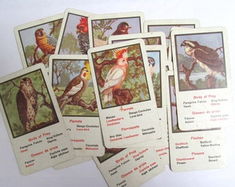 Vintage bird game cards: set of 16 English and French cards. Ephemera for craft, collage, scrapbook, altered art. OT684
