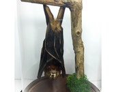 Hanging Upsidedown Bat in Dome Bell Jar UK - Teeth, Horror, Skull, Oddity, Goth, Gothic, Taxidermy, Real, Cloche, Natural History