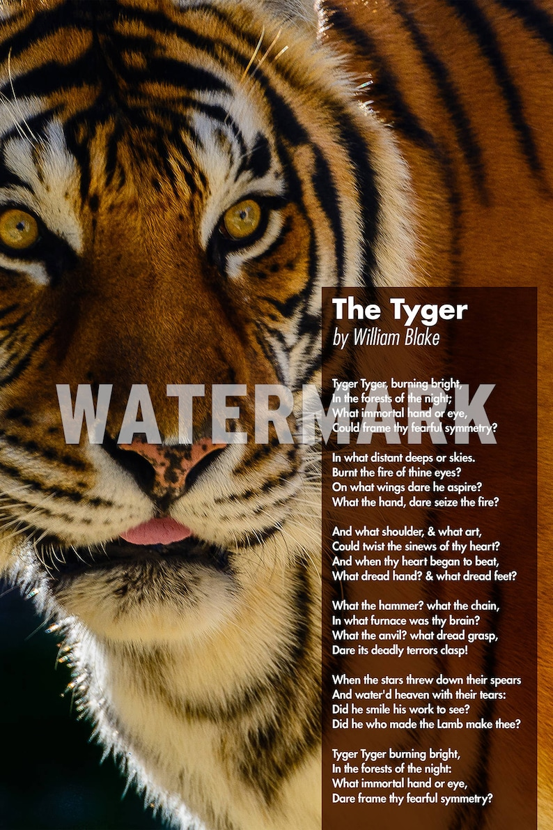william blake gedichte tiger