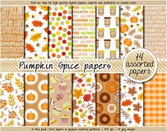 SALE Fall digital paper Pumpkin spice digital paper Thanksgiving digital paper fall scrapbooking red green yellow brown orange fall clipart