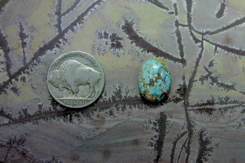 Navada Number Eight Turquoise Cabochon; Natural Handcut
