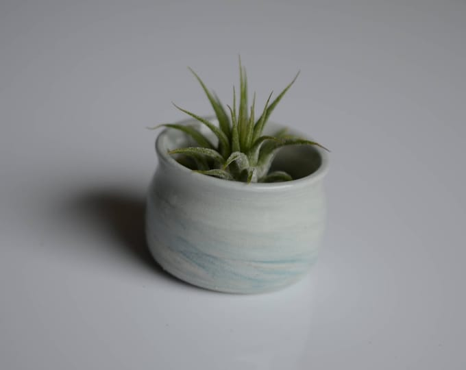 Featured listing image: Tiny Marbled porcelain planter Airplant holder