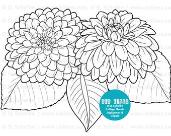 Digistamp flowers dahlias coloring page, flower adult colouring Dahlia  digital stamp