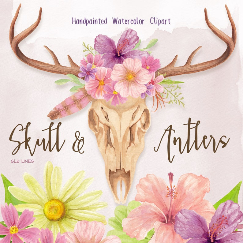 pink green purple handpainted watercolor clipart by SLS Lines animal skull floral graphics watercolor flowers and skulls clipart