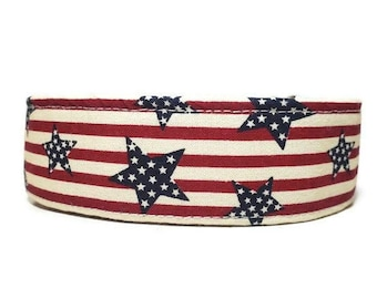 Vintage Patriot Dog Collar, Patriotic Cat Collar, Made To Order - Available in Buckle or Martingale or Chain Martingale or Cat Collar