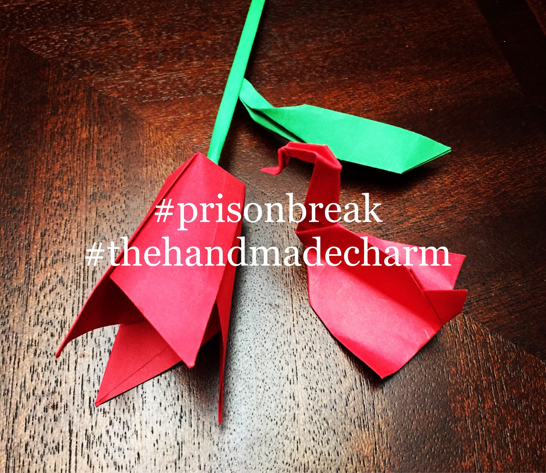 Paper Rose Paper Flower Origami Rose Origami Flower Etsy