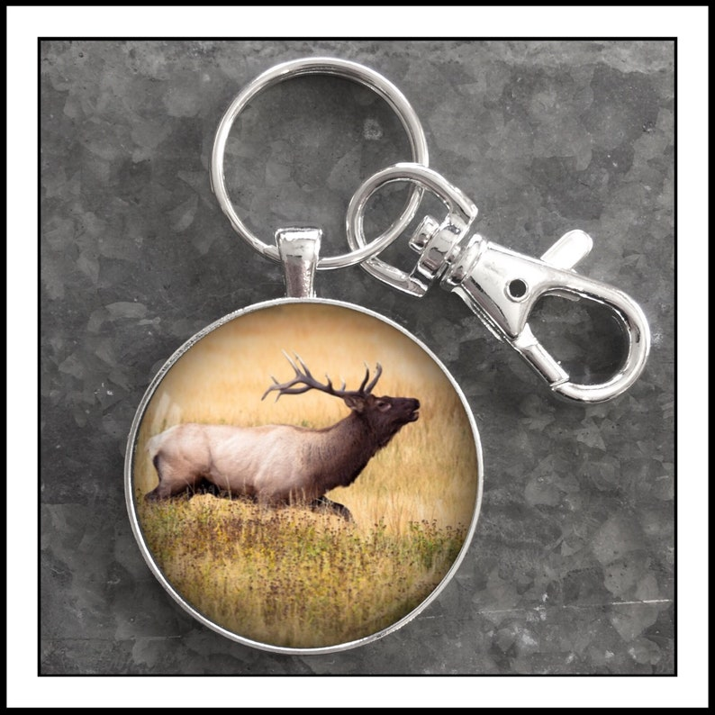 Fishing Hunting Custom trophy photo keychain Photography Bear Men/'s gift key chain Deer Elk