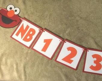 Elmo Newborn thru one year photo banner. Great for birthday parties
