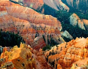 Cedar Breaks National Monument, Utah. 12 X 18 #3026