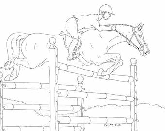 High Jump Horse Pony Hunter Jumper Equestrian Rider