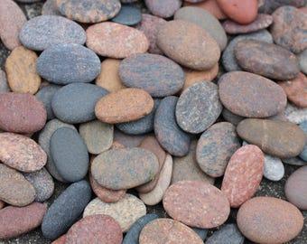Oval Shaped Beach Rocks Sea Stones Oval Pebbles Bulk 100 pcs SMALL