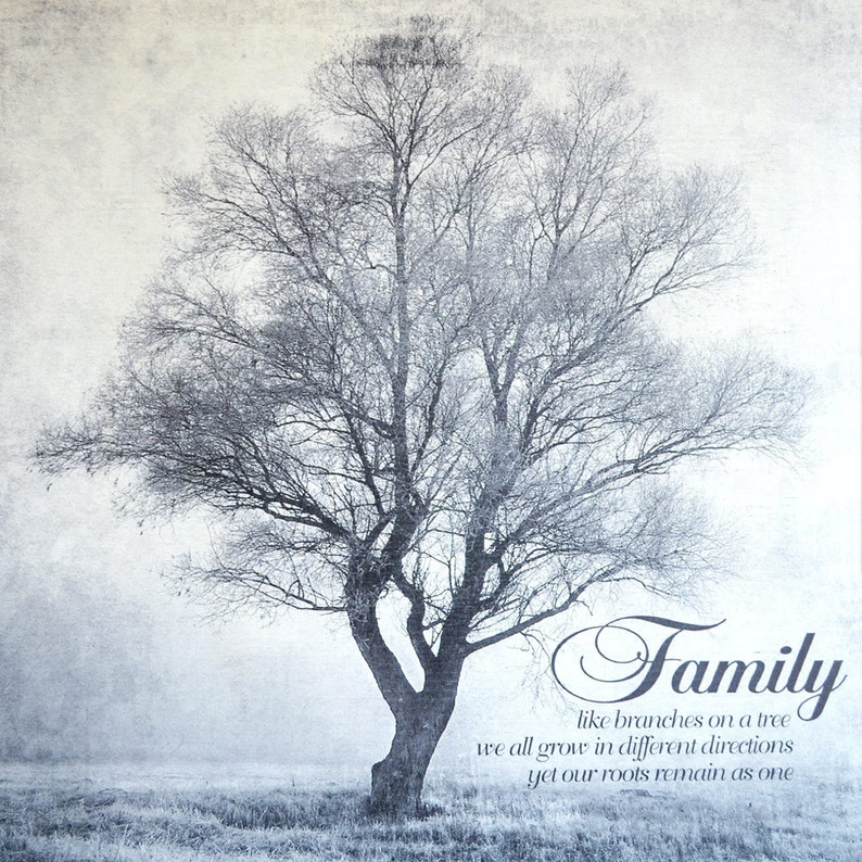Shabby Chic Rustic Farmhouse Family Tree Artwork Like Branches image 0