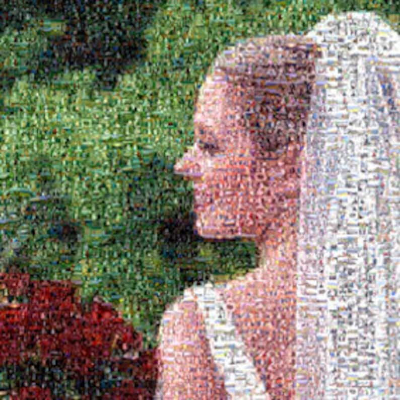 Photo Mosaic created custom from hundreds of photos from image 0