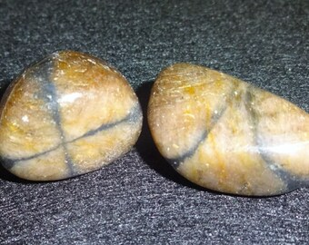 """2pc #6 Chiastolite Tumbled & Polished Gemstone Crystal Healing Collectible, Pocket or Wrapping Stones """"Protection Stone"""""""