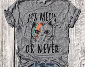 It's MEOW Or NEVER...Unisex Heather Grey Triblend Tee, Ziggy Stardust, David Bowie, Cat Lady, Funny Tee,Funny Shirt,Workout Tee, Size Down