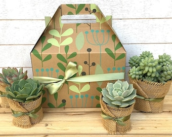 Succulent Gift Box-Garden in a Box-Gift for Gardeners-Father's Day Gift-Rustic Gift-Garden Gift-Plant Gift-Green Thumb Gift-Teacher Gift