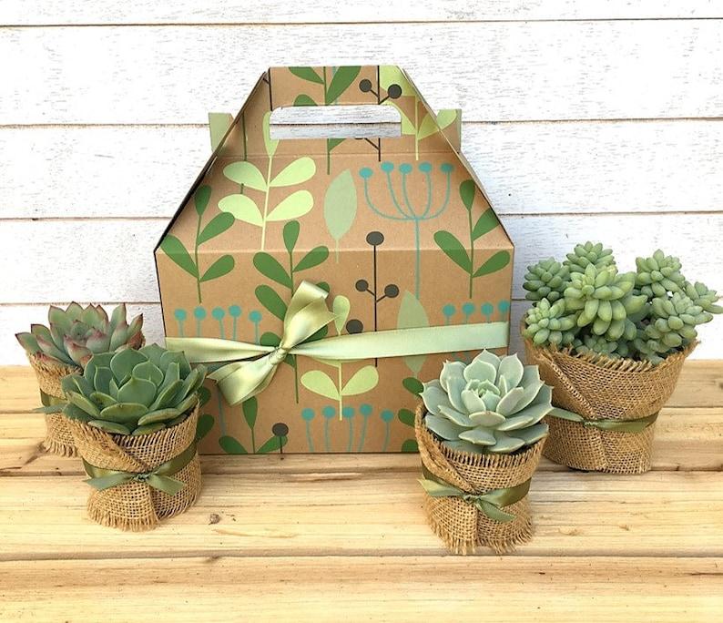 Succulent Gift Box-Teacher Gift-Garden in a Box-Gift for image 0