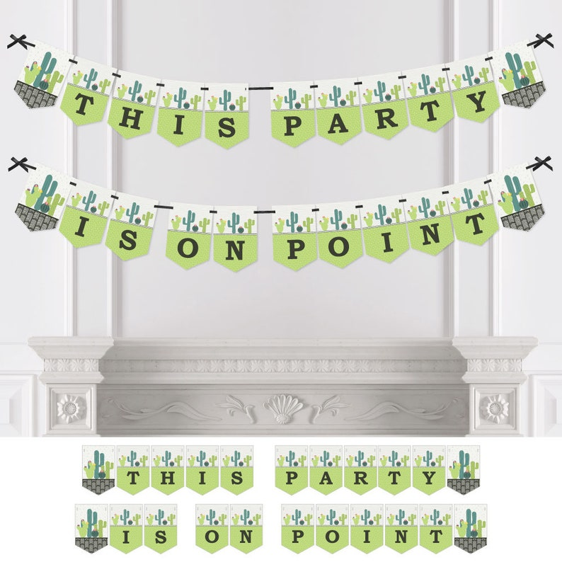 Personalized Fiesta Party Baby Shower Birthday or Everyday Cactus Party Decorations Bridal Shower Prickly Cactus Party Bunting Banner