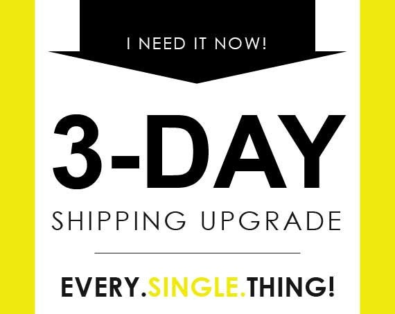 3-Day Shipping Upgrade