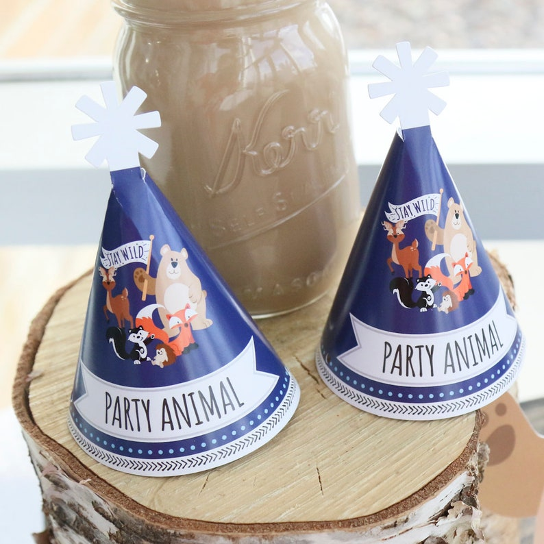 Stay Wild Small Little Woodland Birthday Party Hats Forest Animals Baby Shower Mini Hats 10 Ct Personalized Mini Cone Party Hats
