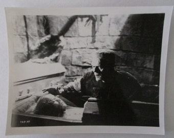 Bride of Frankenstein 8 x 10 Studio Still - Frankenstein / The Bride  - Original Studio Image