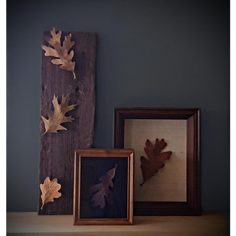 Weathered Oak Wood Sculpture Oak Leaves Mounted On Reclaimed Board Leaf Art Wall Art Wall Decor Wood Leaves Wood Art Leaf Sculpture