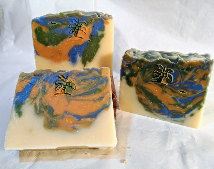 Camp Soap / Antibacterial Soap / insect repellent Soap / vegan soap / camping