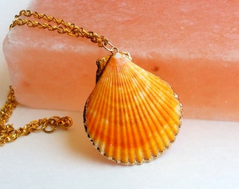 Mermaid seashell necklace- the orange scallop (shell necklace, scallop, gold trimmed shell, seashell, mermaid necklace)