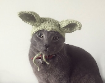 Alien cat dog hat