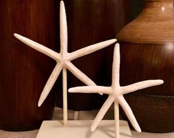 Starfish Decor, Beach Decor, Rustic Beach Decor, Starfish, Beach Wedding Decor, Table Centerpiece Rustic, Beach Wedding Centerpiece, Beach