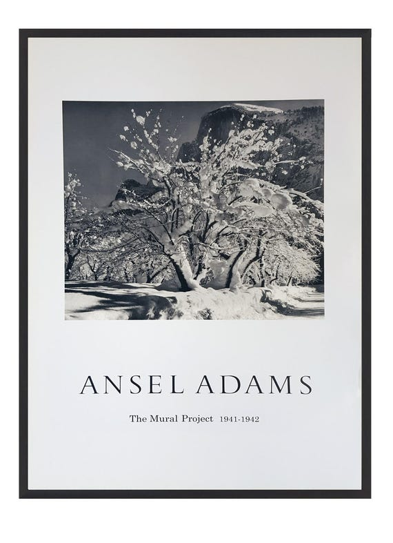 Ansel Adams B//W Photo Snow Covered Apple Orchard Wall Picture 8x10 Art Print