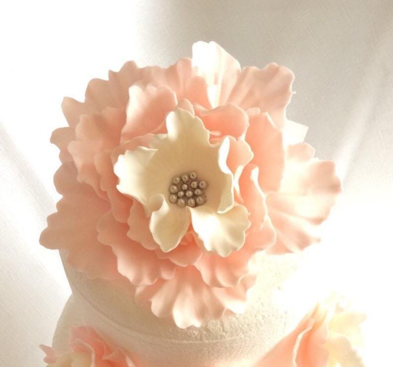 fondant flowers XL Vintage blush pink white silver Peony image 0
