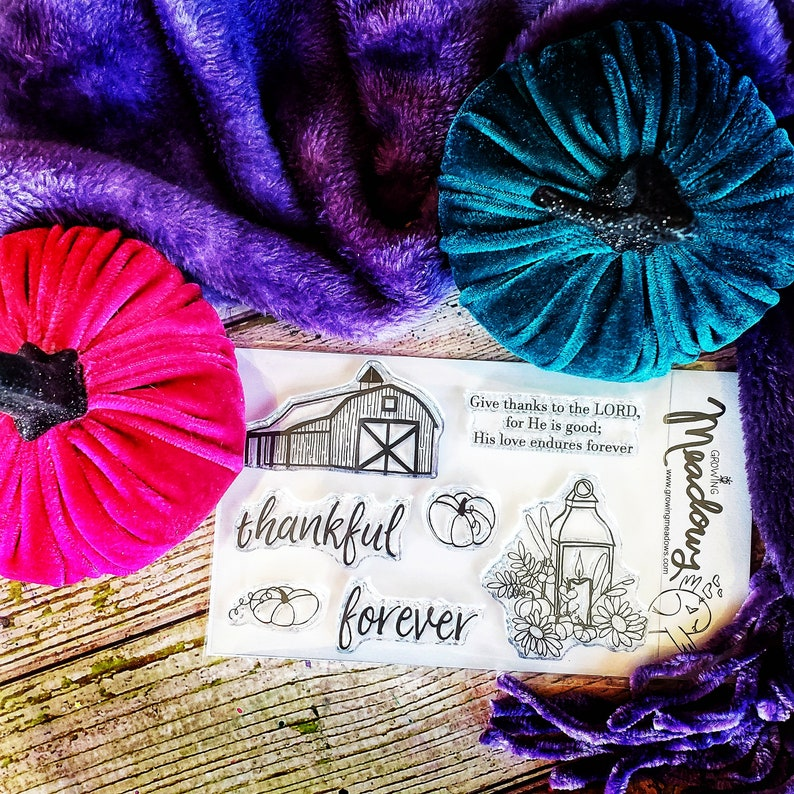 Bible Journaling Stamps Thankful Forever Set Clear barn image 0