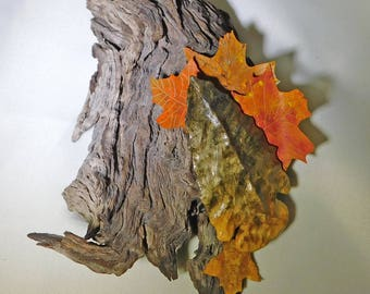 Buckeye Arrowhead on Found Wood with Maple Leaves on wood wall hanging, assemblage of nature.
