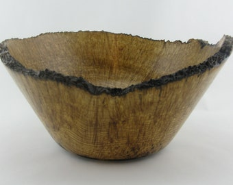 Decorative bowl made from black ash burl. 13 1/2 inc. Diam. X 6 1/2 in. in height