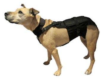 Medium Dog Diaper Wrap with Neck and Extender Package 20 pounds to 40 pounds