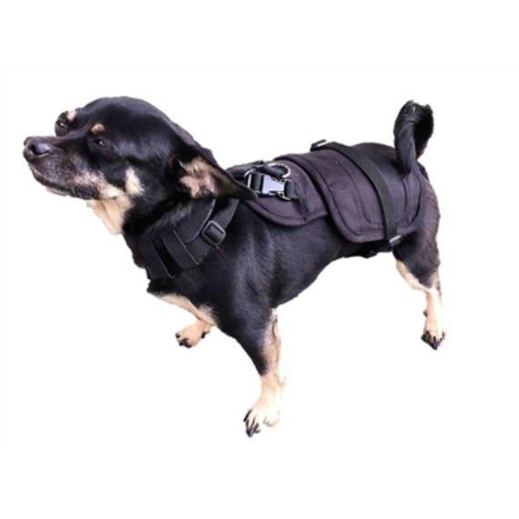 XSMALL Long redessiné chien couche Wrap avec tour de cou accessoire refonte 6 à 7,5 kg