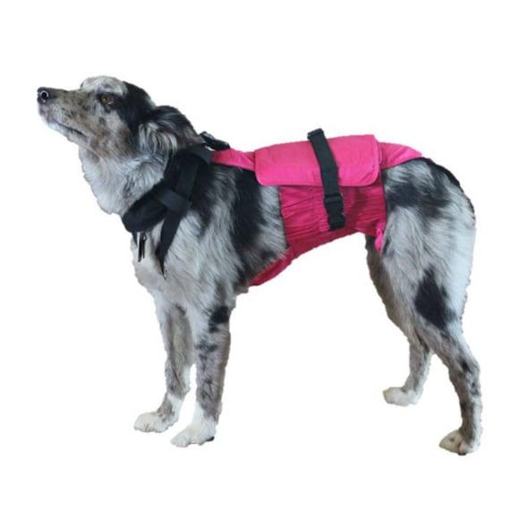 Washable Dog Diaper White Quatrefoil on Green Escape-Proof Washable Dog Diaper Overall