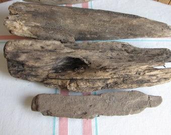 Driftwood 3 Pieces of Driftwood Potomac River, Virginia 1995