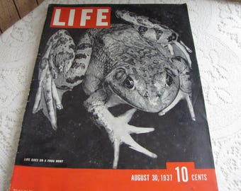 Life Magazines 1937 August 30 Life Goes on a Frog Hunt Vintage Magazines and Advertising