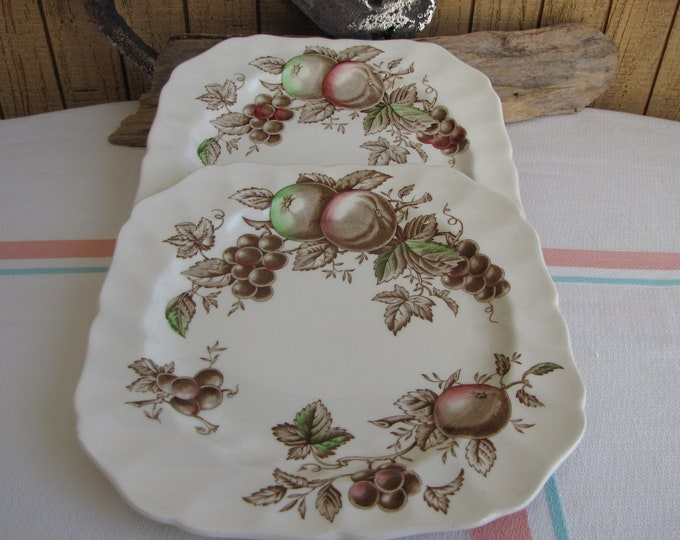 Harvest Time Square Salad Plates set of 2 Johnson Bros. 1967 – 1978 Vintage Dinnerware and Replacements