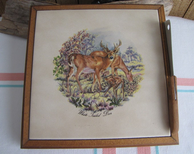 Vintage Cheese Cutting Board and Knife White Tail Deer
