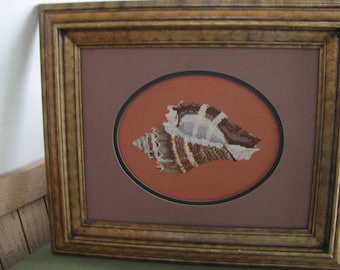 Cross stitched conch shell picture Vintage Art and Home Decor